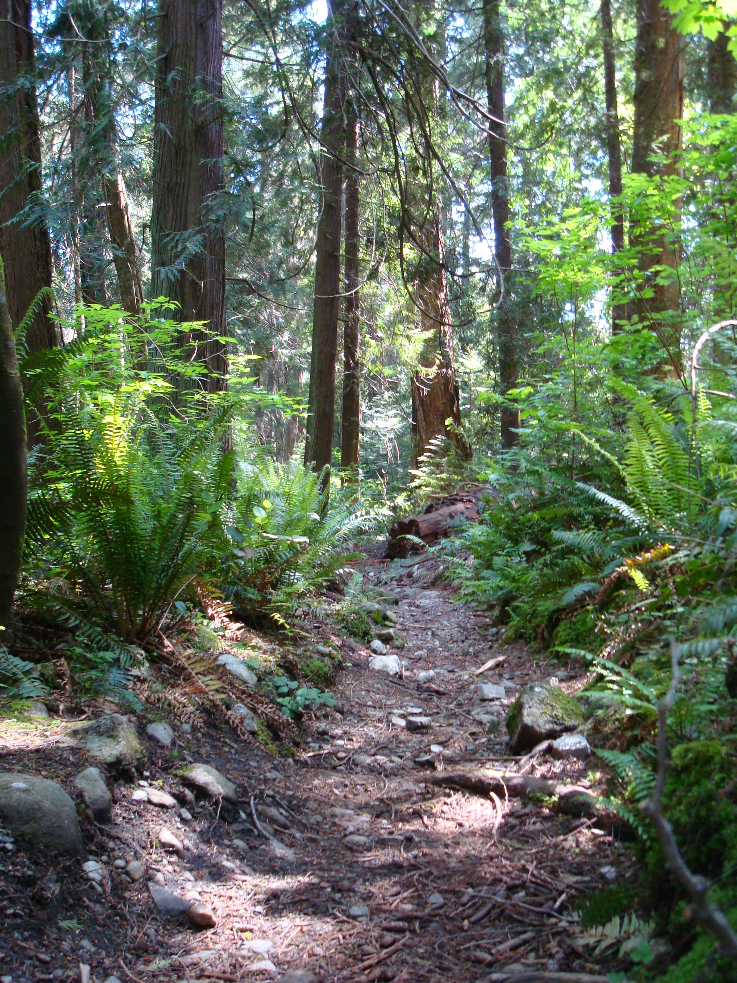 Natural Parenting and Hiking With Young Children