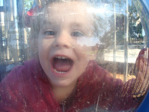 toddler inside a playground bubble