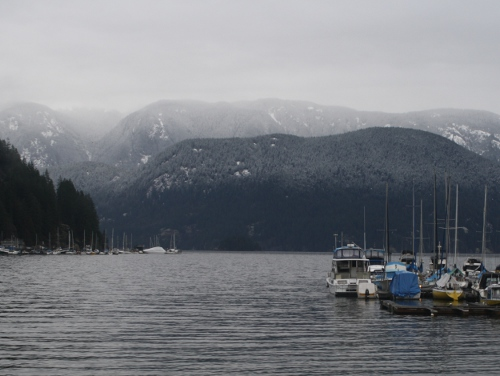 snowy view from deep cove