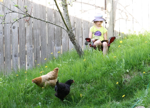 bea_reading_with_chickens